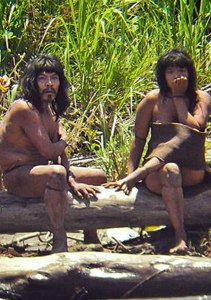 Amazonian Tribe Losing Land Resort To Raids On Villagers